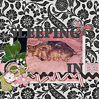 035-02-12-SleepingInByCFALBRO.jpg
