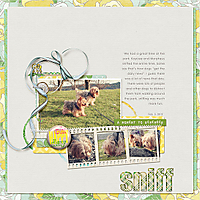 046-03-12-SniffByCFALBRO.jpg