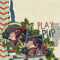 047-05-13-PlayPupByCFALBRO.jpg