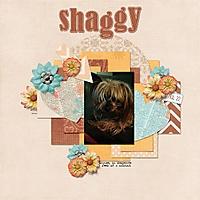 067-07-13-ShaggyByCFALBRO.jpg