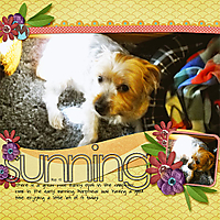 083-05-12-SunningByCFALBRO.jpg