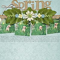 090-05-11-Spring.jpg