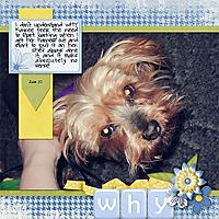 094-06-12-WhyByCFALBRO.jpg