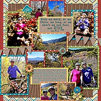 10-09-14StephanieMountainBike.jpg