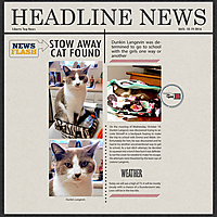 10-19-16-Stow-Away-Cat.jpg