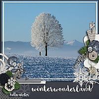 11_19_15_WINTER_WONDERLAND.jpg