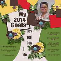 12-2014_goals-Native_Princess_template.jpg