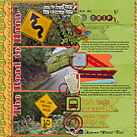 14-2-The-Road-to-Hana-MKing_MeanwhileVacationTS-3-copy.jpg