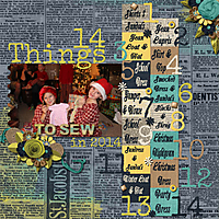 14_Things_to_Sew_in_2014.jpg