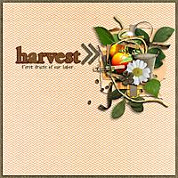 17-harvest-700.jpg