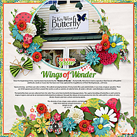 19-Key-West-Nature-and-Butterfly-Conservatory.jpg