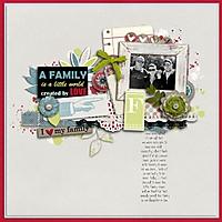 1_20_13_FAMILY_TIME.jpg