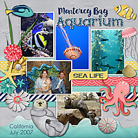 1_Monterey_Bay_Aquarium.jpg