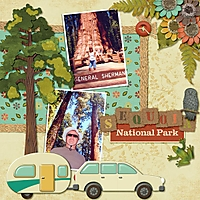 1_Sequoia_Park.jpg