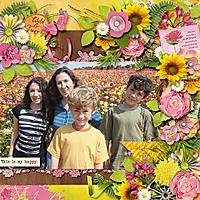 2007-04_cmg-kld-SummersMeadow_ponytails-springfling2_web.jpg