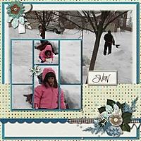 2007-12-30-SnowSmall_001.jpg