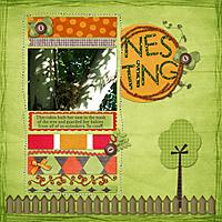 2008-6_Nesting.jpg