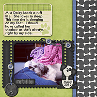 2012-03-10-DaisySleep.jpg
