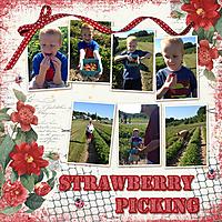 2012_Strawberry_Pickingweb.jpg