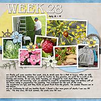 2012_Week_28.jpg