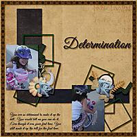2013_Determination.jpg