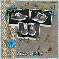 2014-01-bird-shoes.jpg