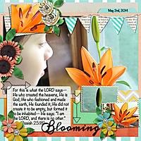 2014-06-20-blooming-pixelily-sem-theme.jpeg