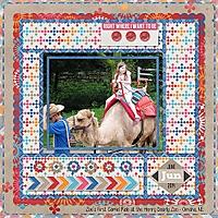 2014-07_designer_cap_camel.jpg