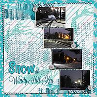 20140121-Snow.jpg