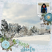 2014_FEB_Magic-of-Winter.jpg