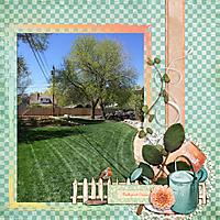 2015-04-backyard-oasis.jpg