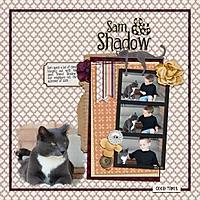 2015-09-shadow.jpg