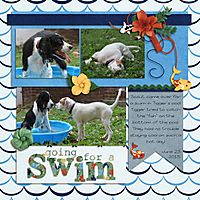 20150623-SwimmingPups.jpg