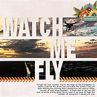 2016-01-08_Fly_web.jpg