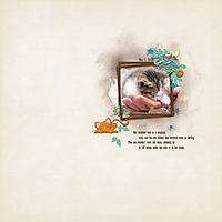 2016-07-kitten.jpg