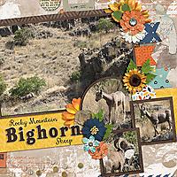 2016-08-25_LO_Rocky-Mountain-Big-Horn-Sheep.jpg