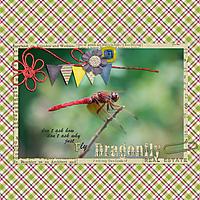 2017-07-dragonfly.jpg