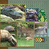 2017-10-24_LO_2017-08-13-Albuquerque-Zoo-3-right.jpg