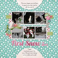 20170106_FirstSnow1.jpg