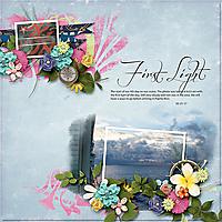 21-1-first-lightahd_brushed2_tmp1-copy.jpg