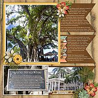21-Moana-Banyon-Tree-DFD_KeepingTabs4_V2-copy.jpg