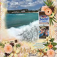 22-Sunset-Beach-ahd_blended4_tmp-copy2.jpg