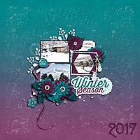 250JanuarySnow2017_2.jpg