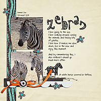 4_13_Jellebelleke_zebras-web.jpg