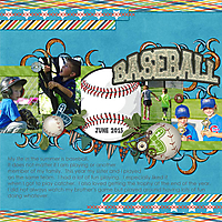 6-Case_baseball_2015_small.jpg