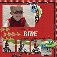 6-Case_bike_2013.jpg