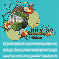 7-July_30_2015_small.jpg