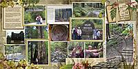9-Around-Muir-Woods-SD-Nature-Hike-DFD_ValuingTheMoments1-copy.jpg