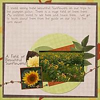 AFieldOfBeautifulSunflowers.jpg