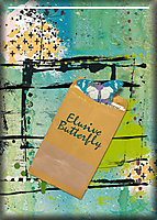 ATC-2018-027-Elusive-Butterfly.jpg